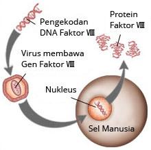 Terapi bersasarkan gen